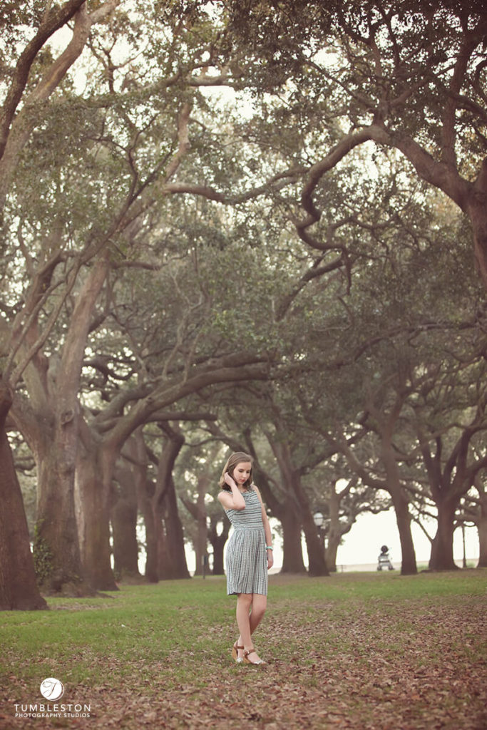 Battery Park Charleston sC
